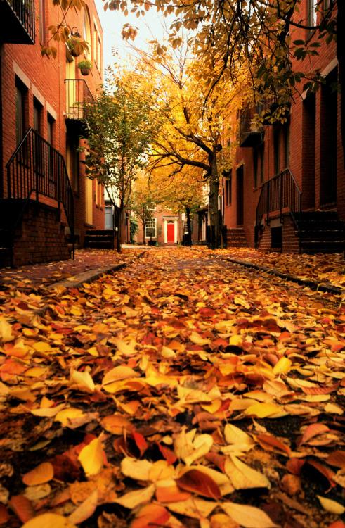 autumn-door